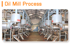 Oil Mill Process